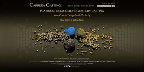 Carrera Casting website